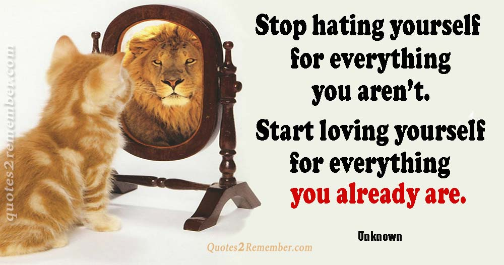 Stop hating yourself for… – Quotes 2 Remember